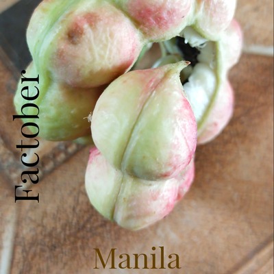 Facts About Manila Tamarind